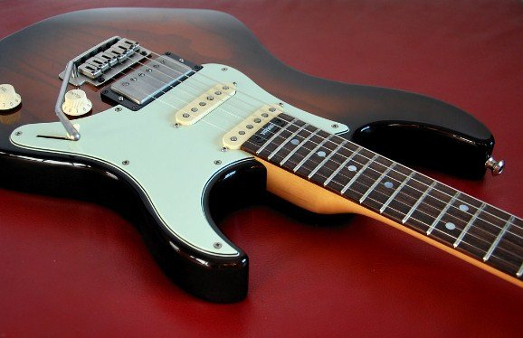 Electric Guitar Price in India